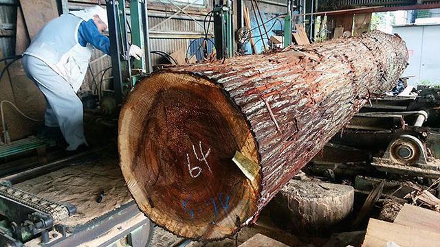 杉の大割(1)