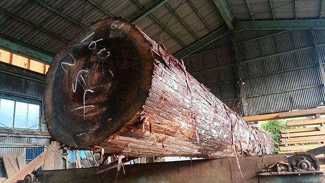 杉の大割(2)