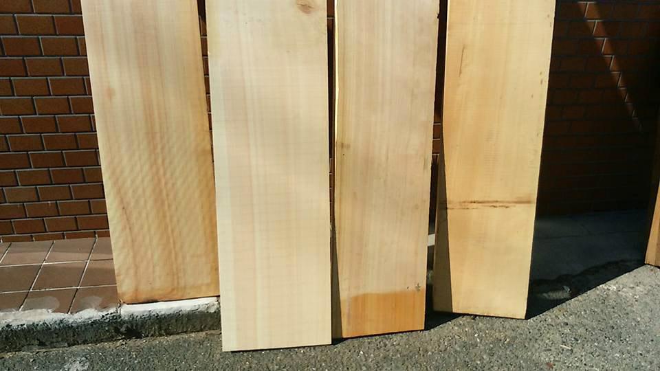 尺の柾 1
