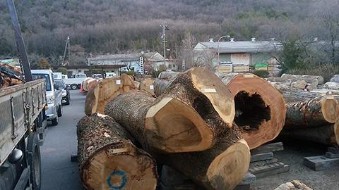 岐阜県の平野木材へ