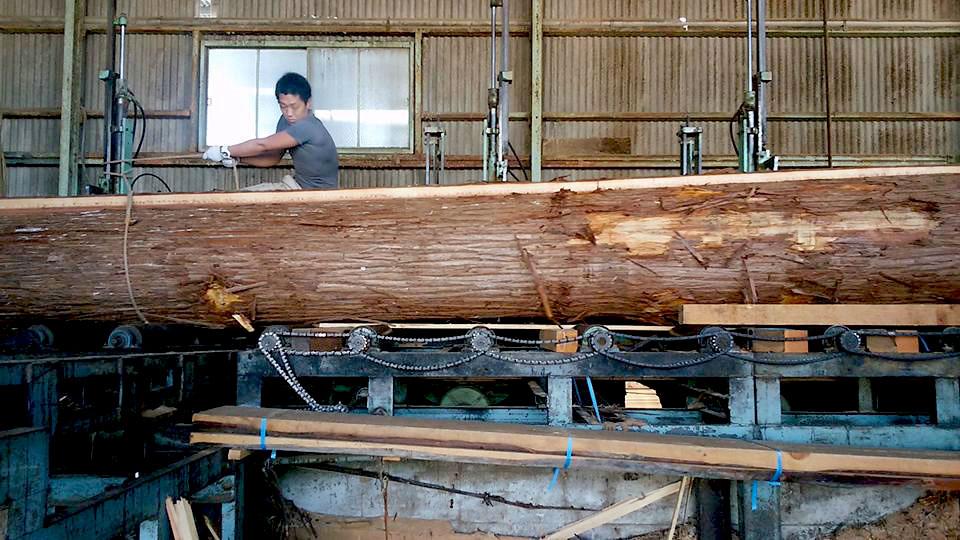 最高の吉野杉です1