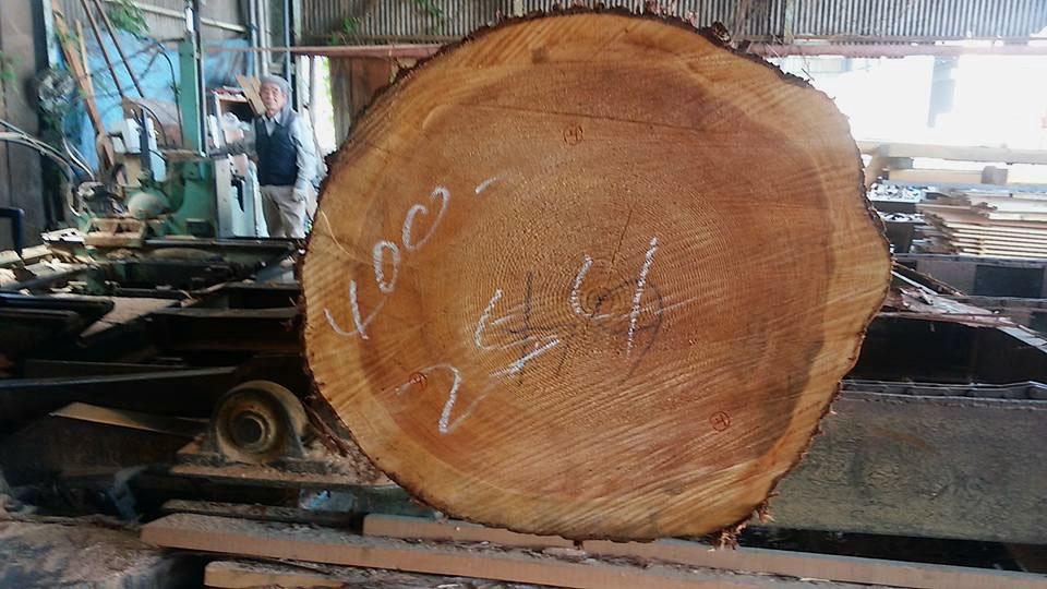最高の吉野杉です4