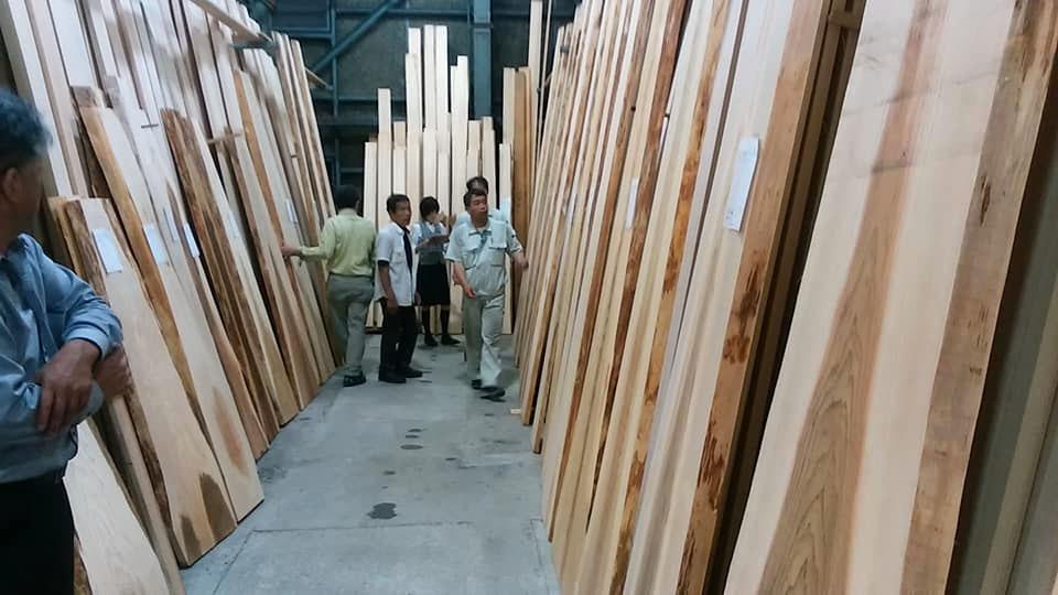 杉の杢板ゲット(1)