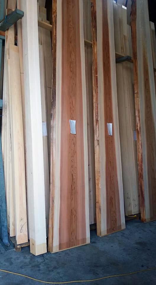 杉の杢板ゲット(3)