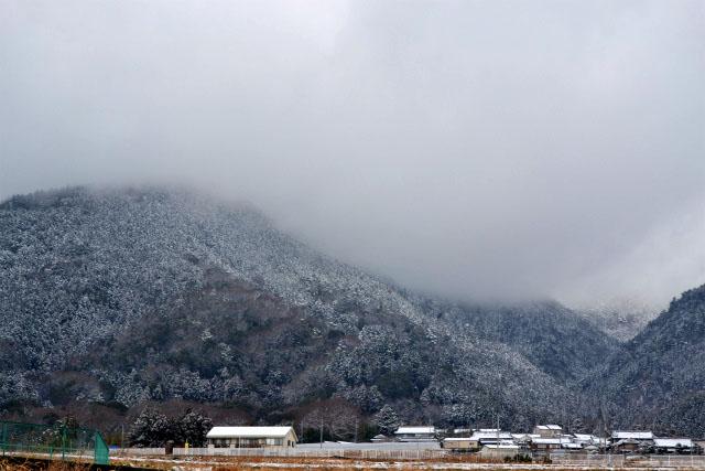 昨日から大雪1